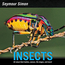 Insects, By Seymour Simon
